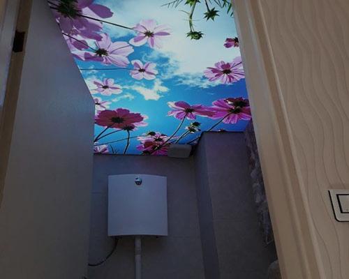 سقف کشسان سرویس بهداشتی